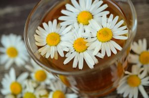 Chamomile Soothes Anxiety and Insomnia