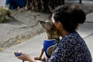 Pets Benefit Our Mental Health